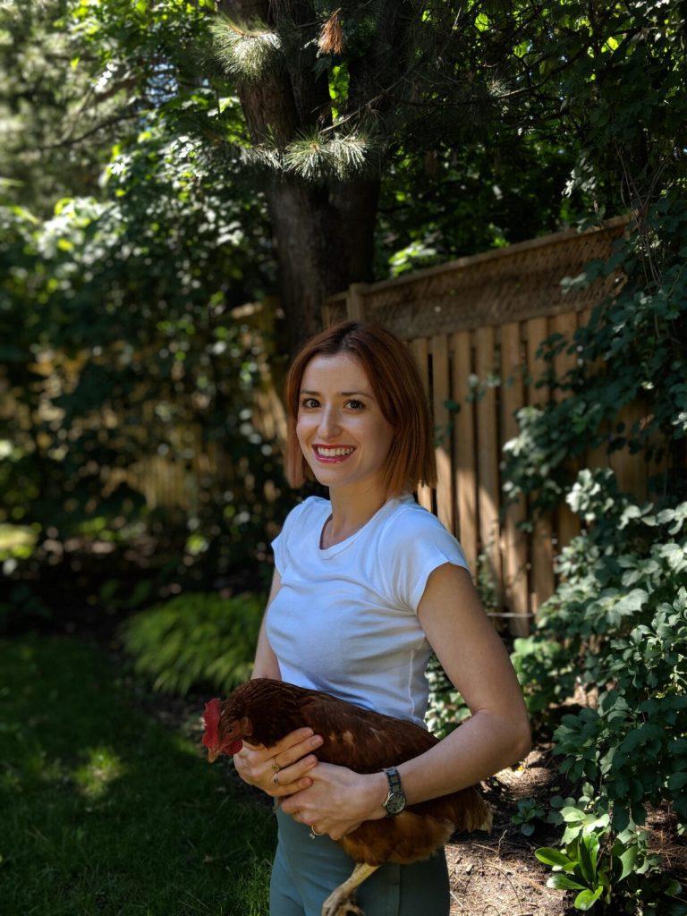 raising chickens in toronto backyard
