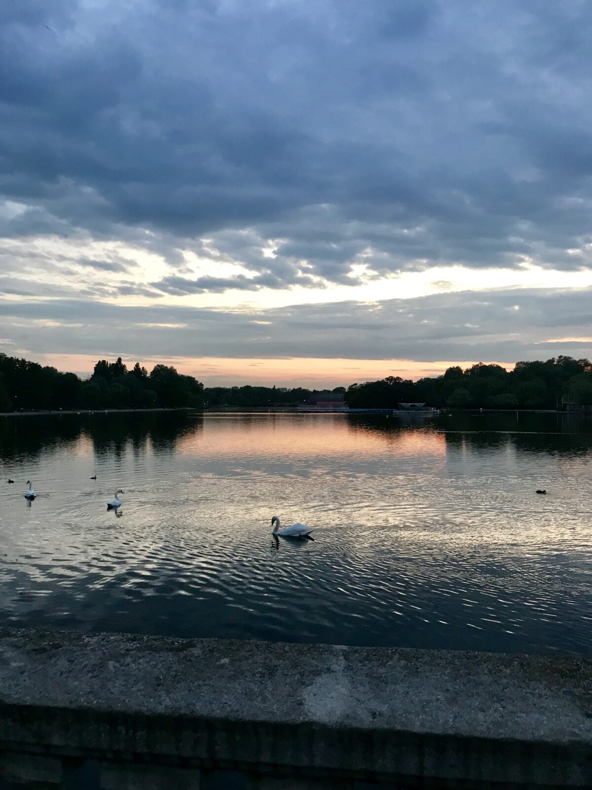 hyde park london city guide edit seven 2018