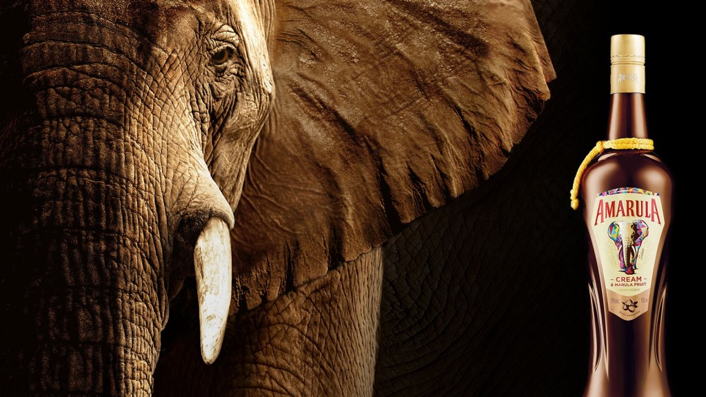 amarula elephant - world elephant day - banner