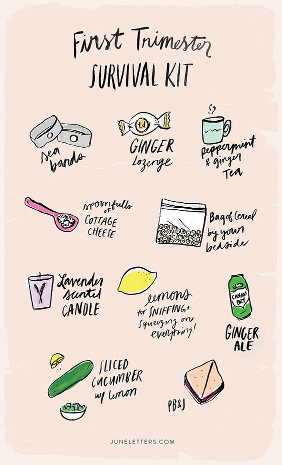first trimester survival guide
