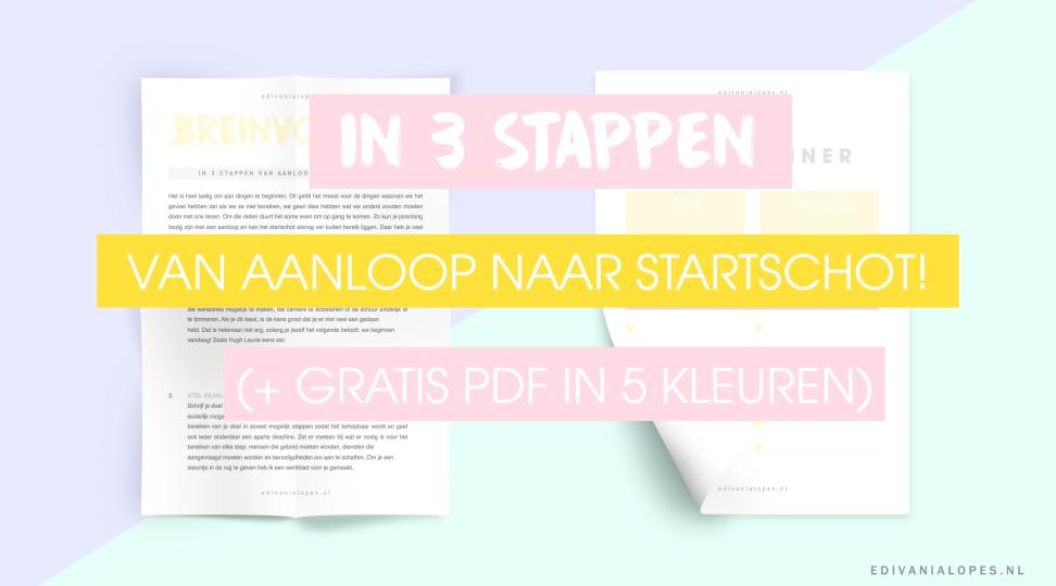 Breinvoer 02 - In 3 stappen van aanloop naar startschot + Gratis PDF in 5 kleuren! - EdivaniaLopes.nl - Doelen behalen