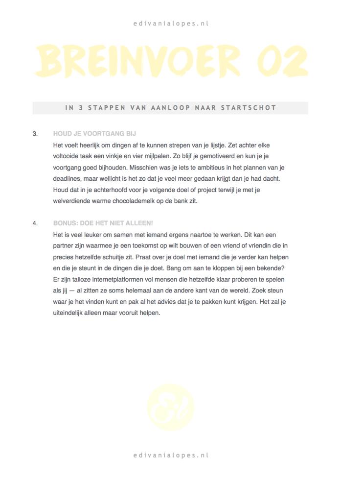 Breinvoer + Doelenplanner - Gratis PDF! Geel Pagina 2