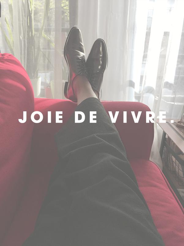 Tussenprogramma: Joie de vivre - Blog - EdivaniaLopes.nl