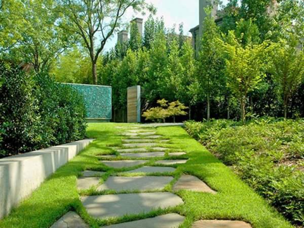 diy landscape design beginners