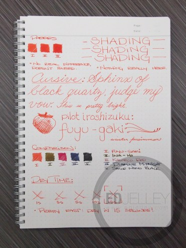 Iroshizuku Fuyu-Gaki Fountain Pen Ink Review