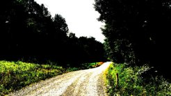 Unknown_150729_120335_IMG_1269-1