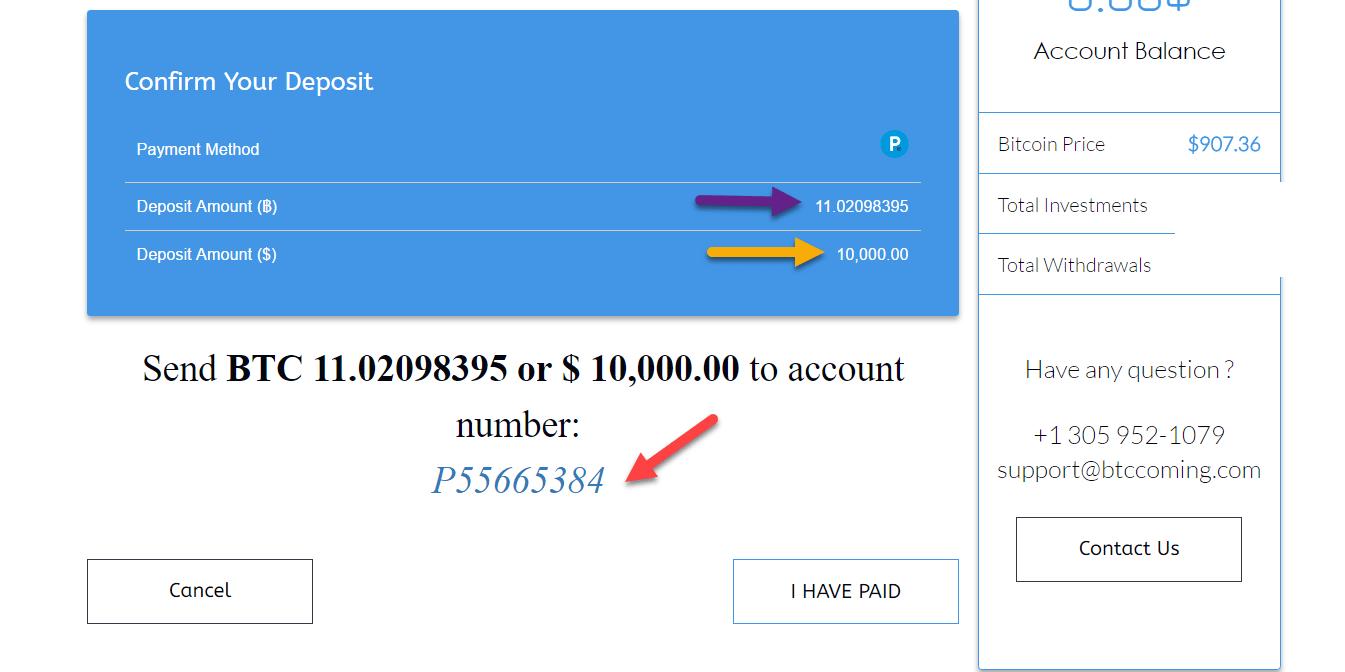 الإستثمار ببنك باير