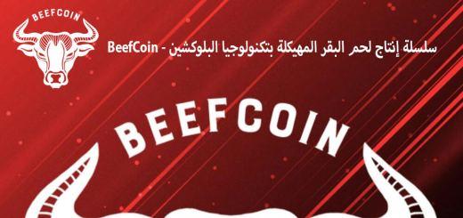 سلسلة إنتاج لحم البقر المهيكلة بتكنولوجيا البلوكشين - BeefCoin