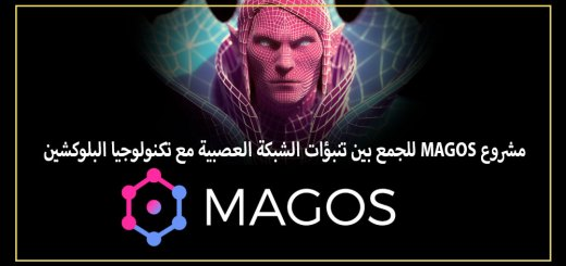 مشروع MAGOS للجمع بين تنبؤات الشبكة العصبية مع تكنولوجيا البلوكشين