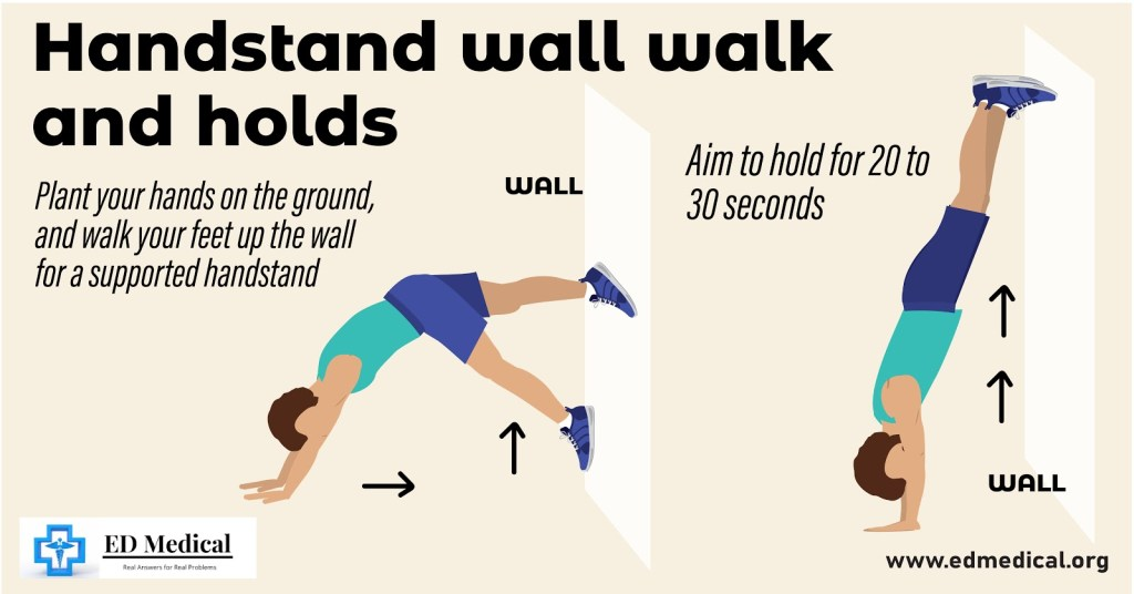 "illustration showing ""How to do Handstand wall walk and holds?"""