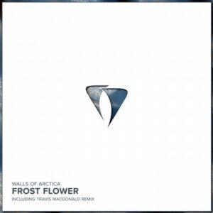 Walls of Arctica – Frost Flower [AM055]