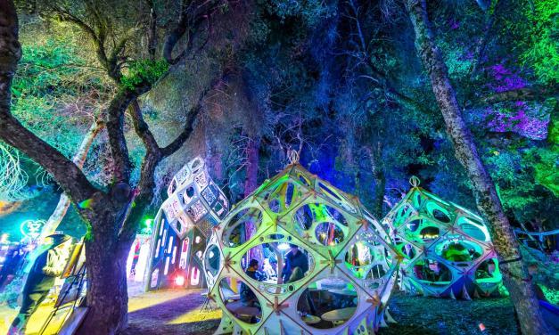 Desert Hearts Festival 2017 || Event Review