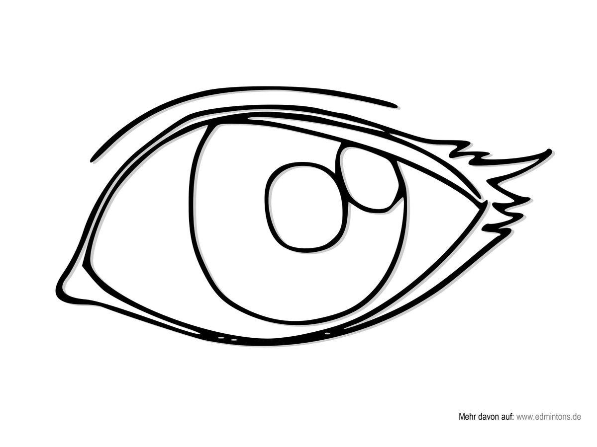 Edmintons - Zeichnungen