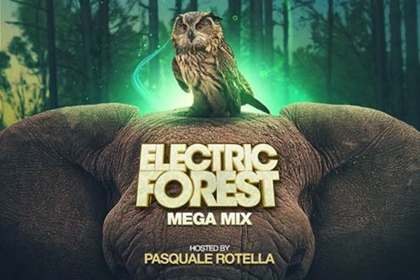 electric forest megamix