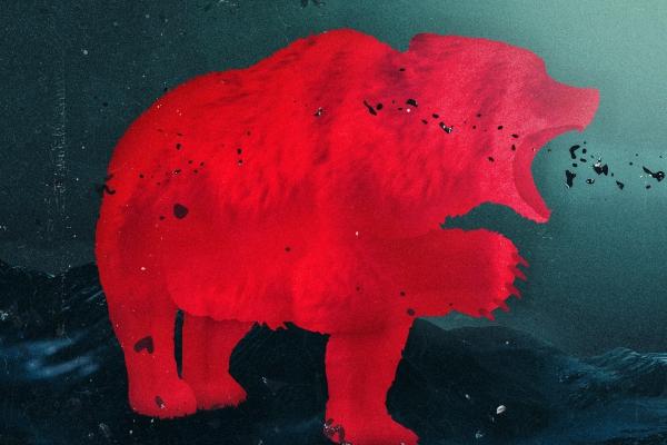 matisse sadko grizzly