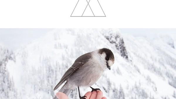 LVNDSCAPE X John Adams – I'm Like A Bird
