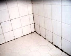 Best Way To Remove Mold And Mildew From Tile Grout