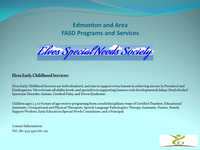 Elves Special Needs Society