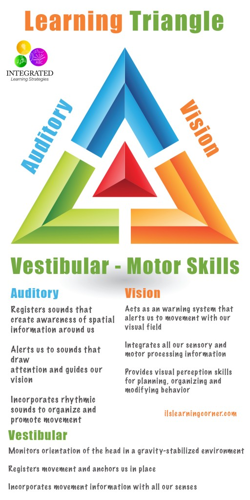 Learning Triangle Without The Vestibular Visual And Auditory