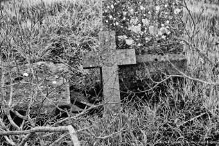 Yew Tree Cemetery (14)