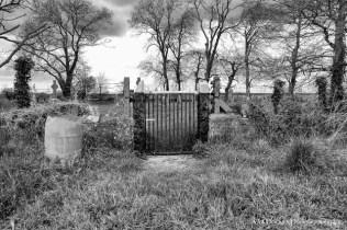 Yew Tree Cemetery (3)