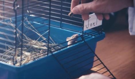 marshmello-deadmau5-alone-EDMred VIDEOCLIP | 'Ritual' de Marshmello, su mejor tema