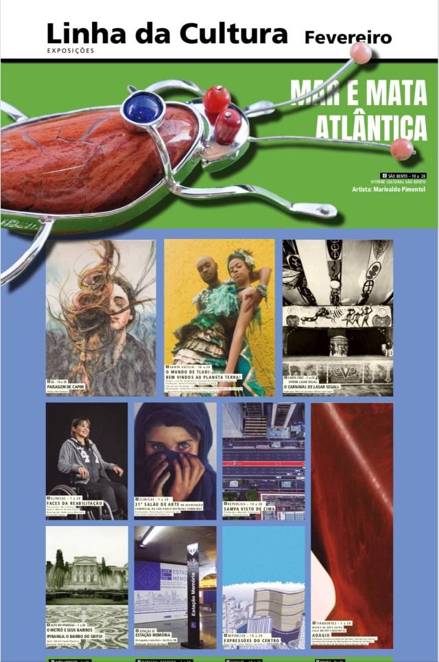 cartaz da Linha da Cultura do Metrô - SP: programação de fevereiro, com a exposição de Edna Carla Stradioto, chamada PAISAGEM DE CAPIM, na estação da Sé