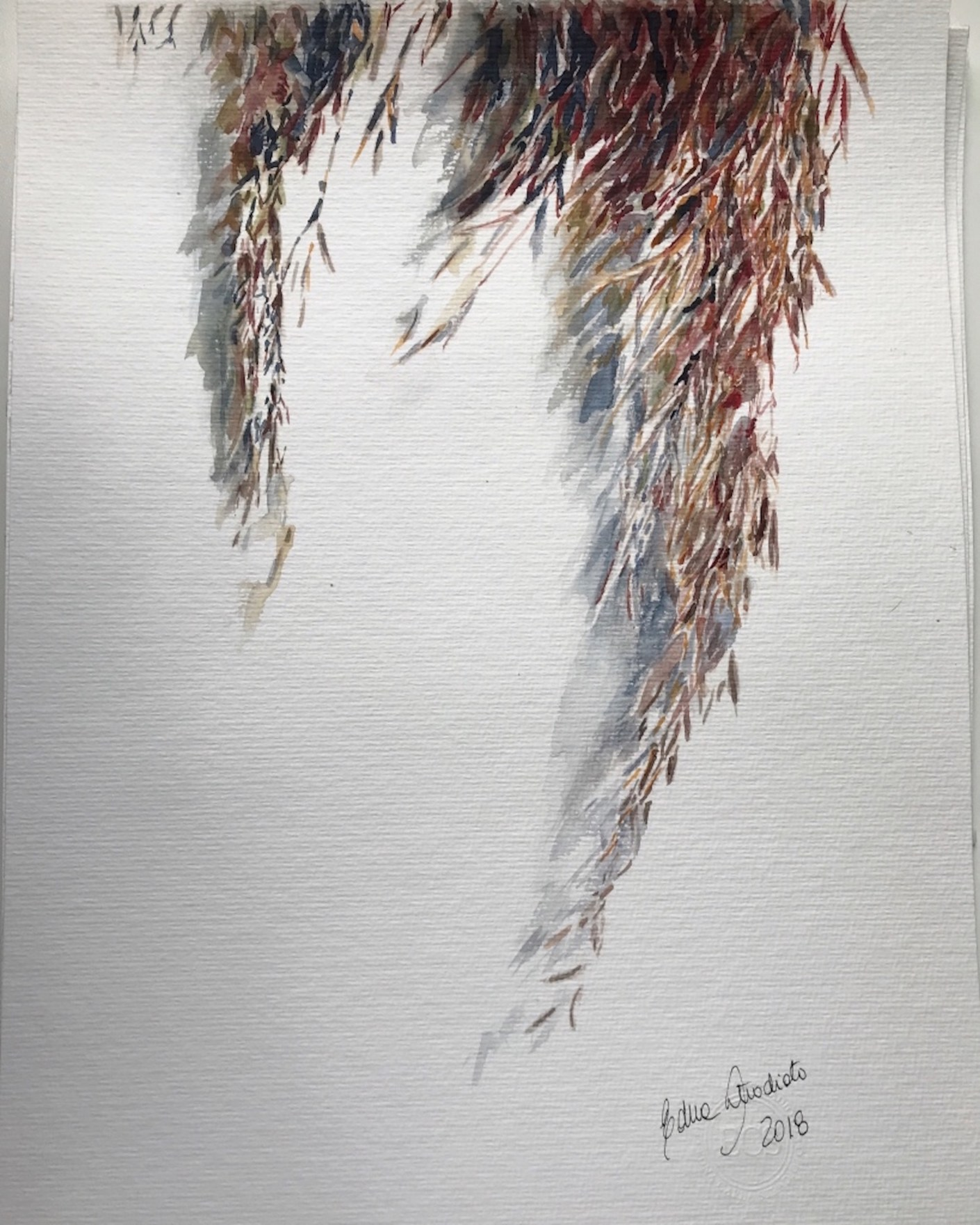 pampas grass 19_watercolor in hahnemuhle 36x48cm 425 gsm_Edna Carla Stradioto 2018