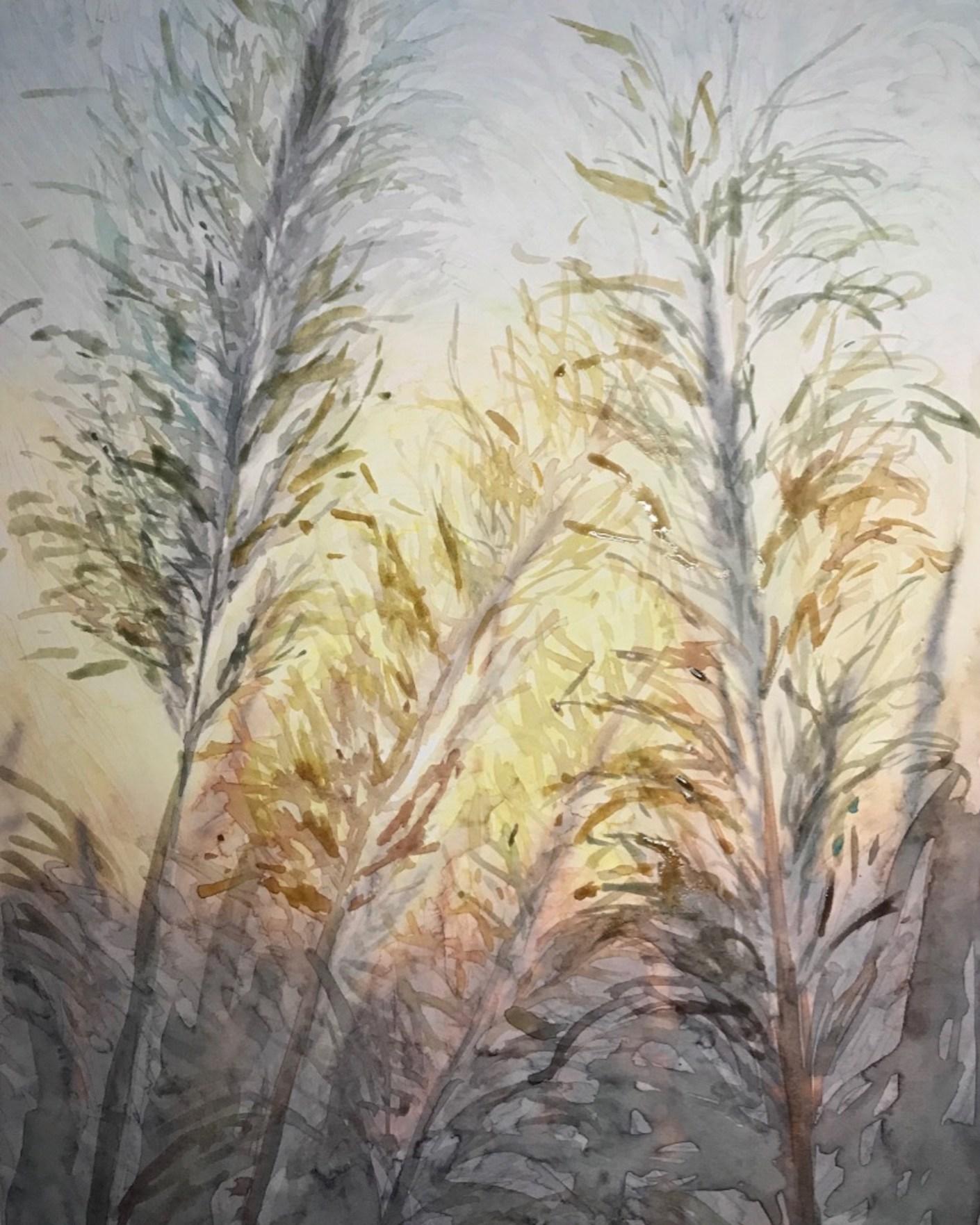 pampas grass landscape 7_aquarela em papel 26X37_Edna Carla Stradioto_2019