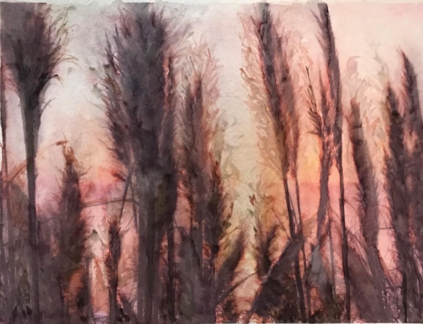 pampique_aquarela em Hahnemuhle Anniversary Edition 425 gsm_30x40cm_Edna Carla Stradioto_2019