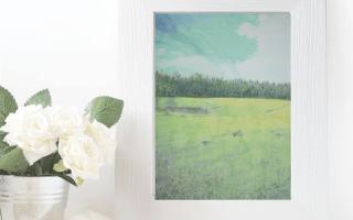 Pamplindo, aquarela pintura feita em papel 100% algodão, livre de ácido, da marca Hahnemüle Anniversary Edition, 425gsm, de 36x48cm, feita em 2020.