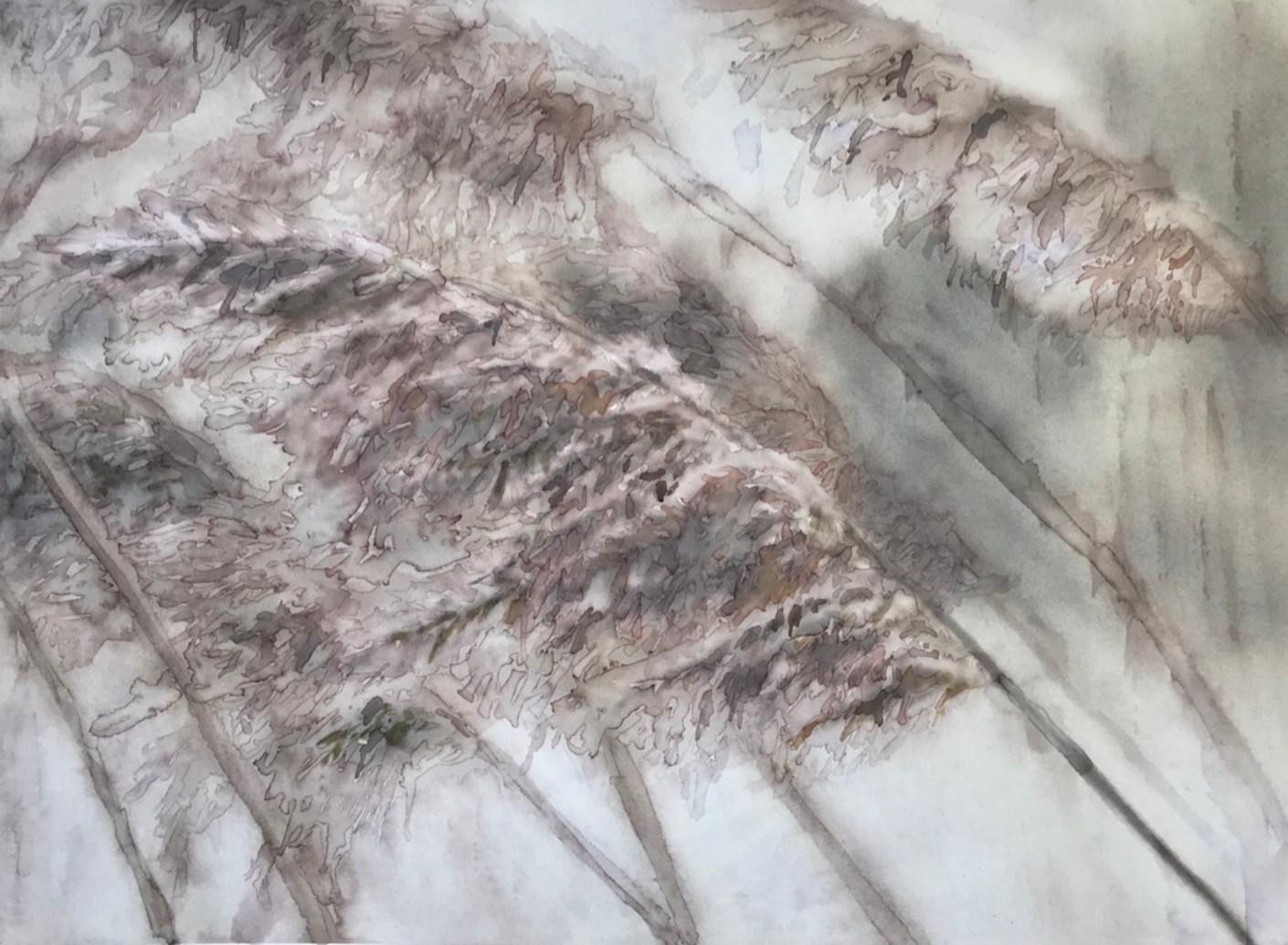 pampluma_aquarela em Hahnemuhle Anniversary Edition 425 gsm_30x40cm_Edna Carla Stradioto_2019