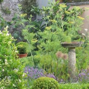 Bird bath in an enclosed herb garden