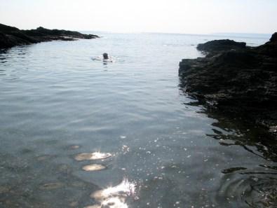 A quiet Cove