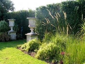 Evening garden sunshine