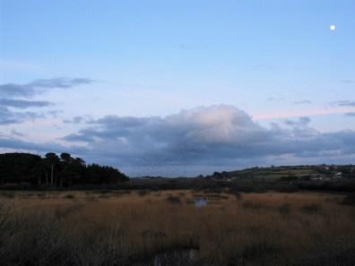 landscape at dusk
