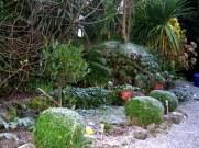 A dawn frost