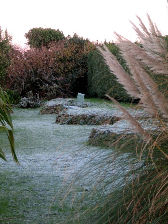 A rare frost