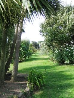 pahtway through a cornish garden