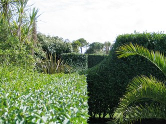 The half circles cut into the hedges in the Italian GArden give glimpses along the gravel border
