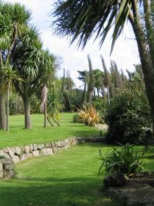 Cornish garden