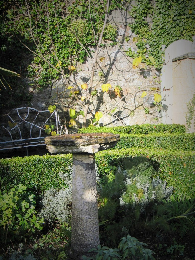 Autumn days in one of the little side courtyards