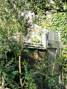 A hidden doorway as we clear the garden for spring