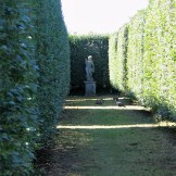The farmal aisle through the Italian Garden at Ednovean Farm
