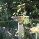 fennel-bird-bath