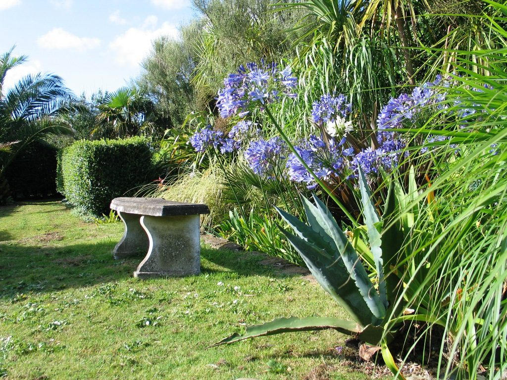 Agave and agapanthus with stone bench in the Italian GArden