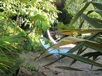 Two sun loungers tucked under semi exotic planing in a gravel border