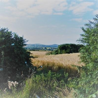 gateway view