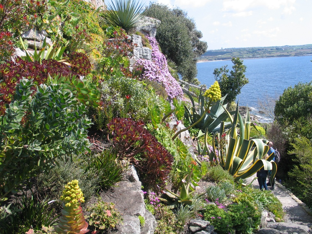 St Micahel's Mount Gardens -dramaic sub tropical terrace of rock garden