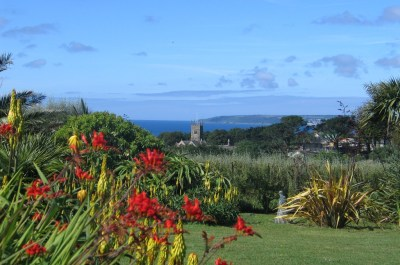 June garden diary - summer flowers and sea views - Ednovean Farm